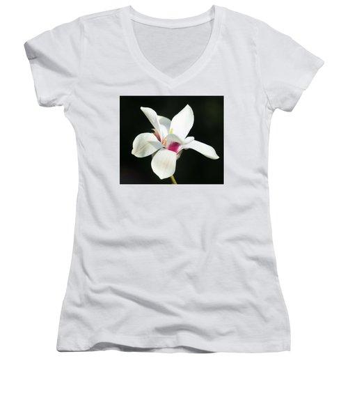 Becoming Women's V-Neck T-Shirt