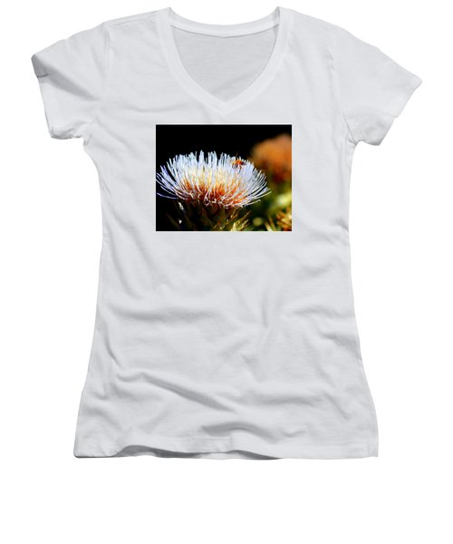 Bee And Artichoke Women's V-Neck (Athletic Fit)