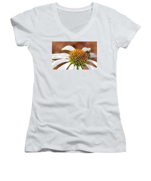 Women's V-Neck T-Shirt featuring the photograph Bee In The Echinacea  by AJ Schibig