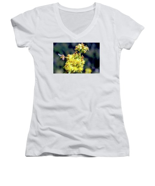 Bee On Goldenrod Women's V-Neck T-Shirt