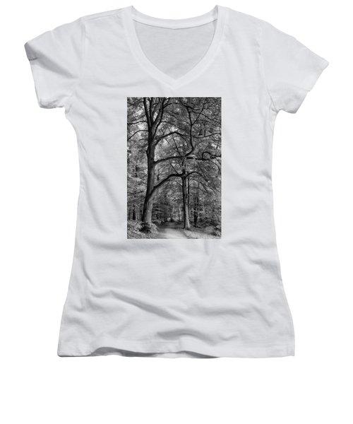 Beech Forest - 365-222 Women's V-Neck T-Shirt (Junior Cut) by Inge Riis McDonald