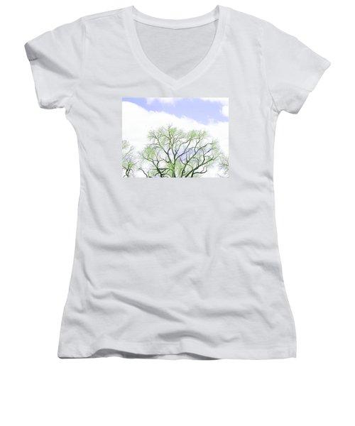 Beginnings Women's V-Neck T-Shirt