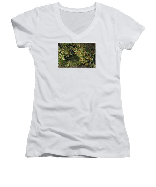 Berry Spread Women's V-Neck T-Shirt (Junior Cut) by Deborah  Crew-Johnson