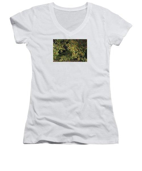 Berry Spread Women's V-Neck T-Shirt