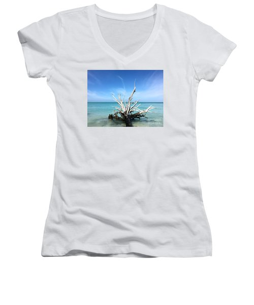 Beside Still Waters Women's V-Neck T-Shirt