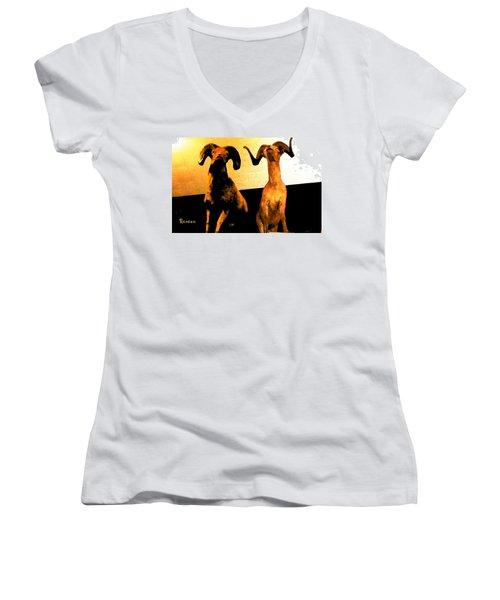 Big Game Canada - Fannin Sheep Women's V-Neck T-Shirt (Junior Cut) by Sadie Reneau