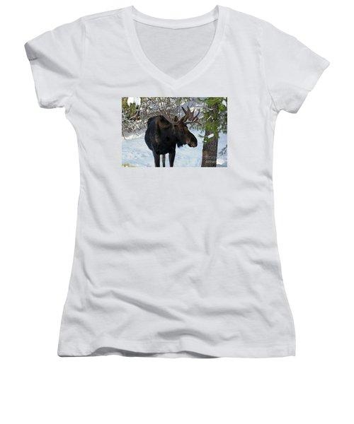Big Moose Women's V-Neck