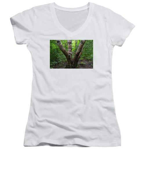 Birch Bark Tree Trunks Women's V-Neck