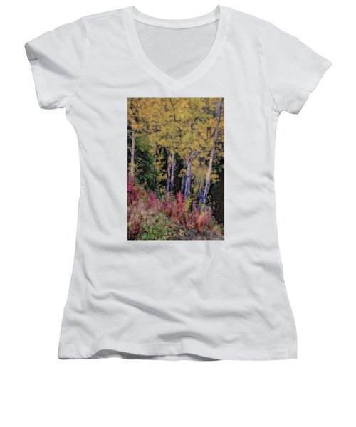 Birches At The Perch #1 Women's V-Neck T-Shirt
