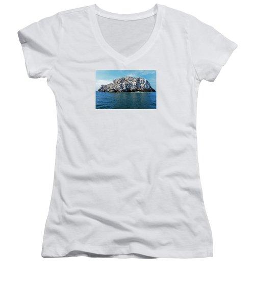 Bird Island 2 Women's V-Neck T-Shirt