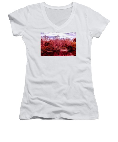 Women's V-Neck T-Shirt (Junior Cut) featuring the photograph Bird Out On A Limb 2 by Madeline Ellis