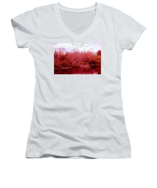 Women's V-Neck T-Shirt (Junior Cut) featuring the photograph Bird Out On A Limb by Madeline Ellis