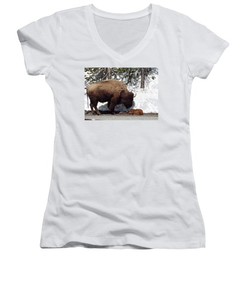 Bison Calf After Birth Women's V-Neck T-Shirt
