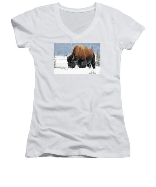 Bison Roaming In The Lamar Valley Women's V-Neck (Athletic Fit)