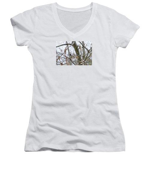 Black-capped Chickadee 20120321_39b Women's V-Neck T-Shirt (Junior Cut) by Tina Hopkins