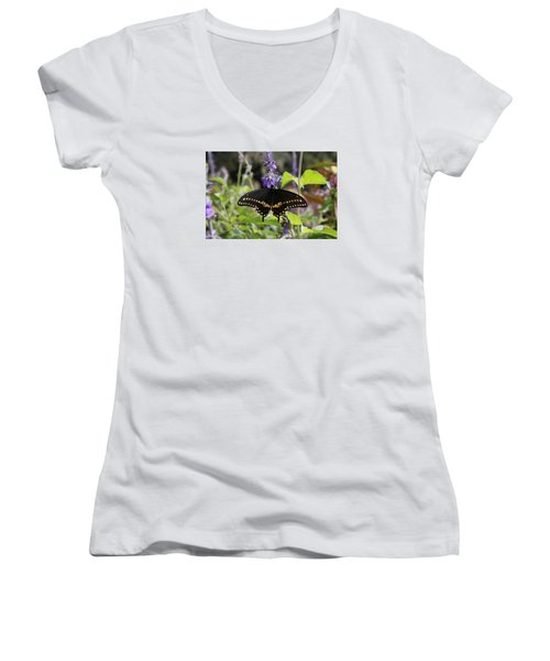 Black Swallowtail Women's V-Neck (Athletic Fit)