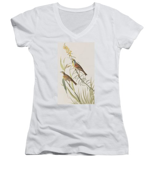 Black-throated Bunting Women's V-Neck T-Shirt