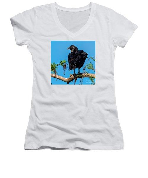 Black Vulture Women's V-Neck