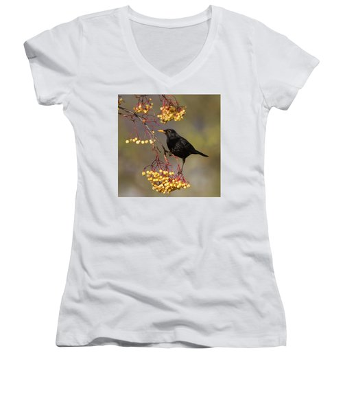 Blackbird Yellow Berries Women's V-Neck
