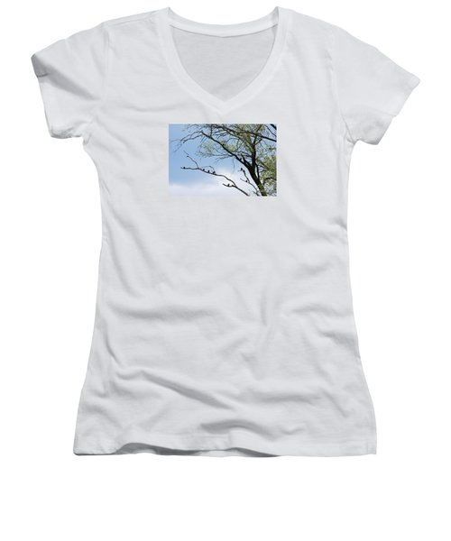 Women's V-Neck T-Shirt (Junior Cut) featuring the photograph Blackbirds 20120409_221a by Tina Hopkins
