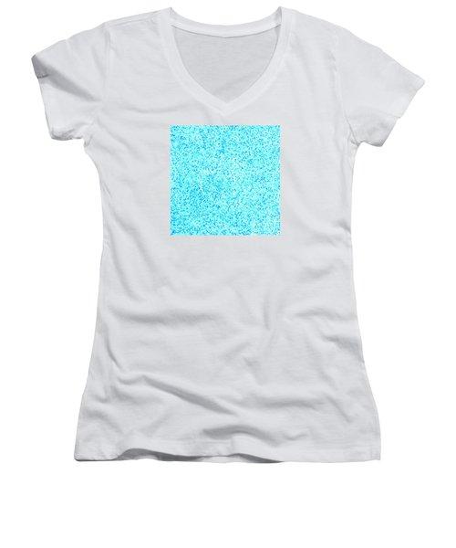 Bllue On Blue Women's V-Neck T-Shirt