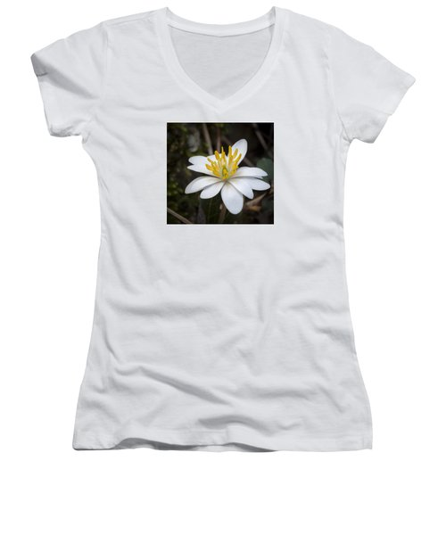 Women's V-Neck T-Shirt (Junior Cut) featuring the photograph Bloodroot by Tyson and Kathy Smith