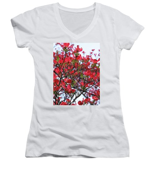 Blossoms Women's V-Neck T-Shirt
