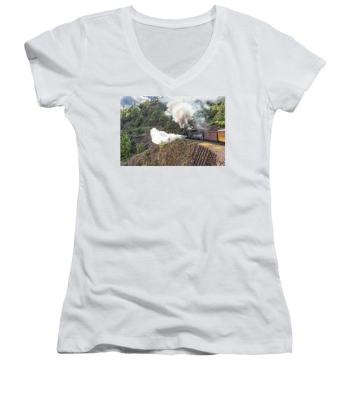 Blowing Down 481 Women's V-Neck