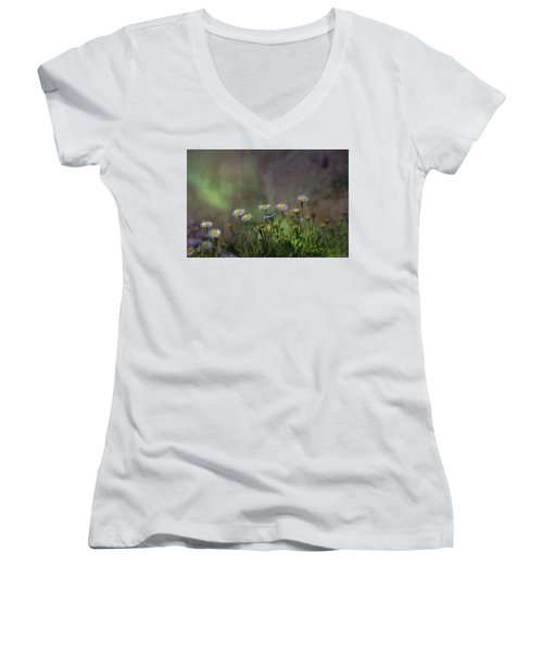 Blowing In The Breeze Women's V-Neck T-Shirt