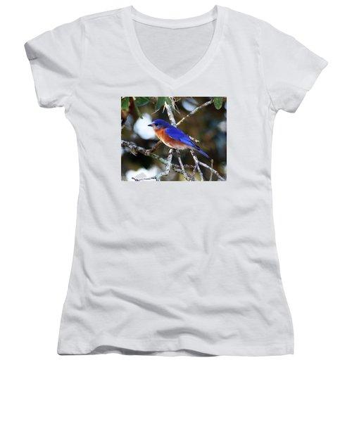 Blue Bird Women's V-Neck T-Shirt (Junior Cut) by Lamarre Labadie