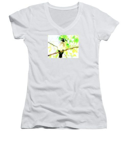 Blue Jay IIi Women's V-Neck T-Shirt