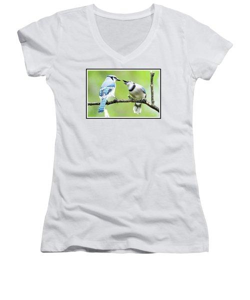 Blue Jay Parent Feeding Juvenile Women's V-Neck T-Shirt (Junior Cut) by A Gurmankin