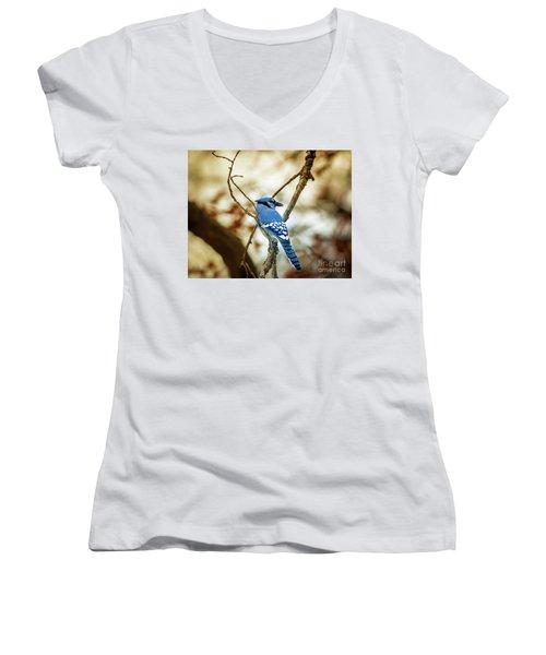 Blue Jay Women's V-Neck T-Shirt (Junior Cut) by Robert Frederick