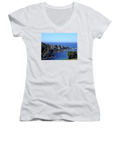 Blue Pacific Women's V-Neck T-Shirt