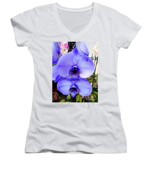 Blue Phalaenopsis Orchid Women's V-Neck T-Shirt