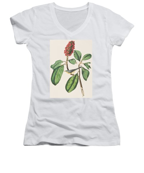 Bonaparte's Flycatcher Women's V-Neck T-Shirt (Junior Cut)