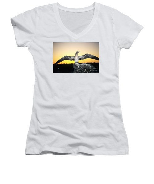 Booby At Sunset Women's V-Neck T-Shirt (Junior Cut) by Dave Fleetham - Printscapes