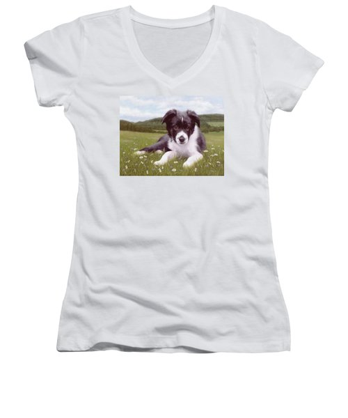 Border Collie Puppy Painting Women's V-Neck T-Shirt (Junior Cut) by Rachel Stribbling