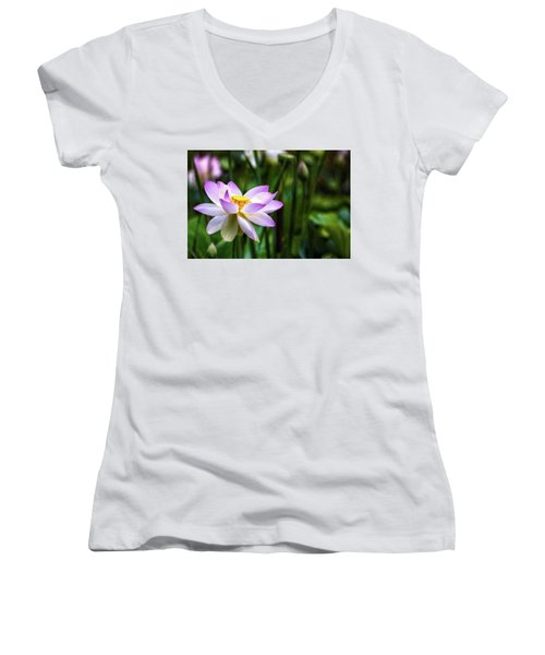 Born Of The Water Women's V-Neck T-Shirt (Junior Cut) by Edward Kreis