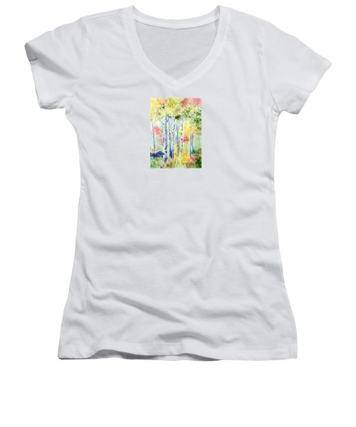 Boulder Grove Women's V-Neck