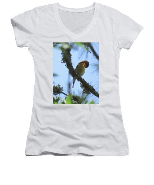 Bird Of Pray - Images From The Garden Women's V-Neck T-Shirt (Junior Cut) by Brooks Garten Hauschild