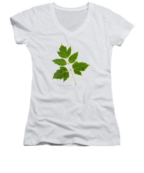 Women's V-Neck T-Shirt (Junior Cut) featuring the mixed media Box Elder Maple by Christina Rollo