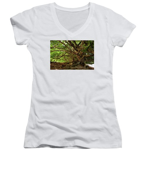 Branches And Roots Women's V-Neck