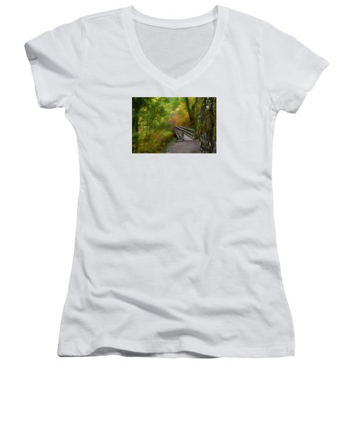 Bridge To Lightness Women's V-Neck T-Shirt (Junior Cut)