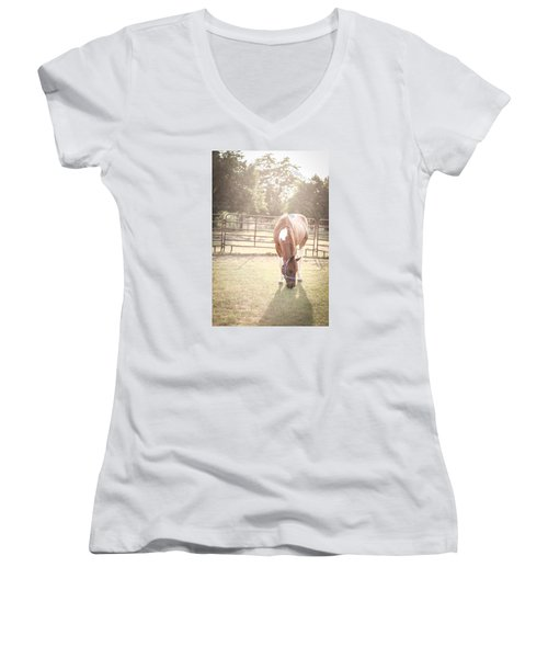 Brown Horse In A Pasture Women's V-Neck T-Shirt (Junior Cut) by Kelly Hazel