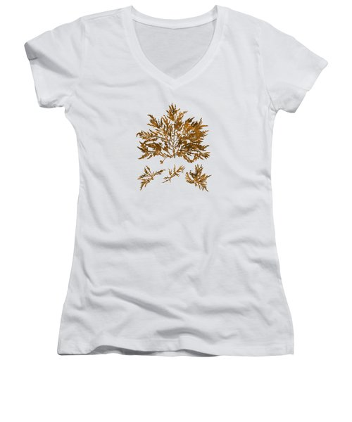 Women's V-Neck T-Shirt (Junior Cut) featuring the mixed media Brown Seaweed Marine Art Chylocladia Clavellosa by Christina Rollo