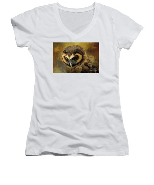Brown Wood Owl Women's V-Neck