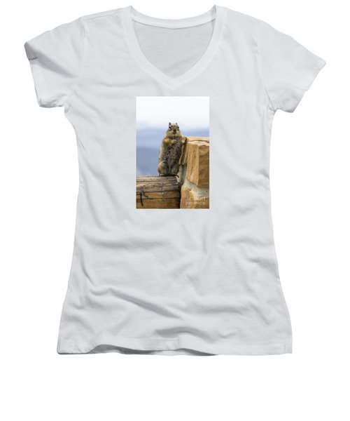 Bryce Squirrel Women's V-Neck T-Shirt