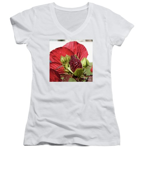 Budding Beauty Women's V-Neck (Athletic Fit)