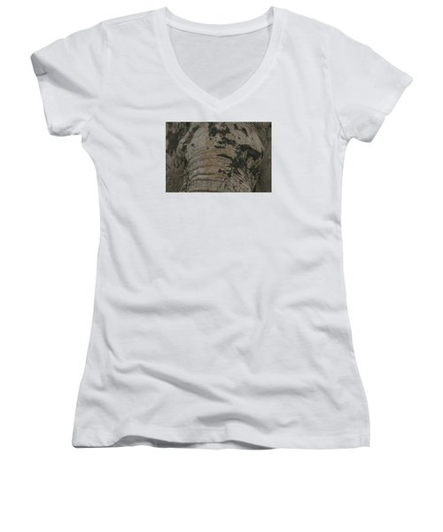 Women's V-Neck T-Shirt (Junior Cut) featuring the photograph Bull Elephant Close-up by Gary Hall